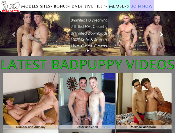 Badpuppy.comcom